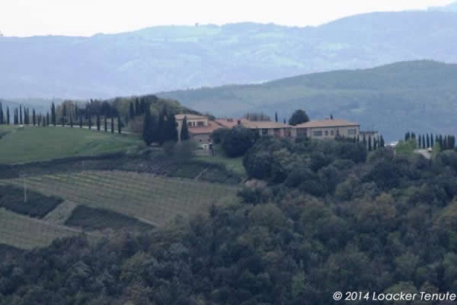 Brunello di Montalcino - Tasting of 3 Organic wines