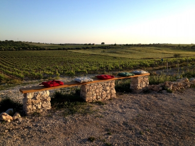 Sicily  - A journey in the BIO – an afternoon in the cellar